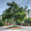 211 Colonial Homes Drive NW #1503 -  007