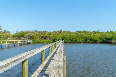 Vacant Lot With Dock-104