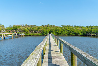 Vacant Lot With Dock-106