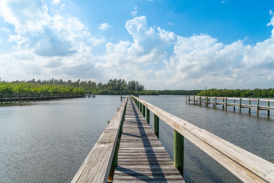 Vacant Lot With Dock-101