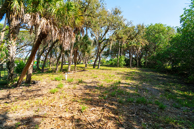 Vacant Lot With Dock-113