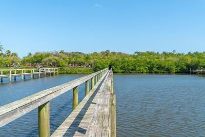 Vacant Lot With Dock-105