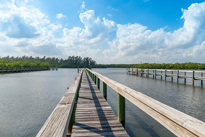 Vacant Lot With Dock-100