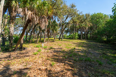 Vacant Lot With Dock-114