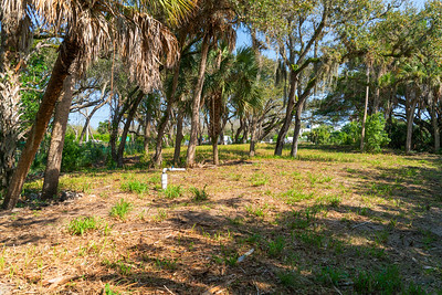 Vacant Lot With Dock-115