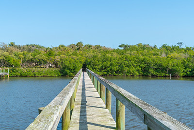 Vacant Lot With Dock-107