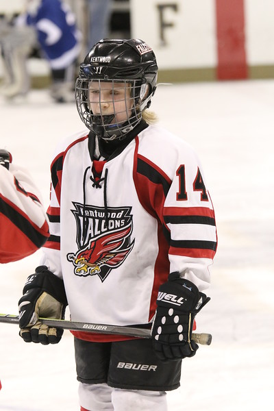 KENTWOOD FALCONS PW A2 BR