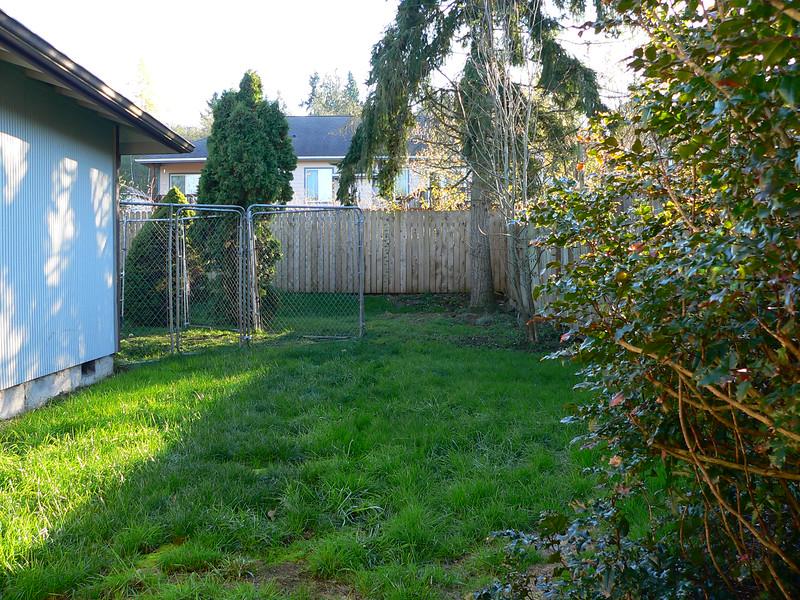 west side yard - back