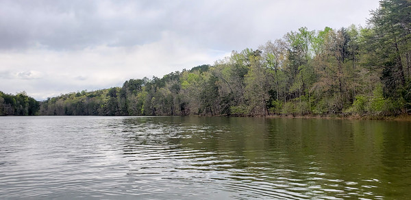 View of Shoreline from the Lake