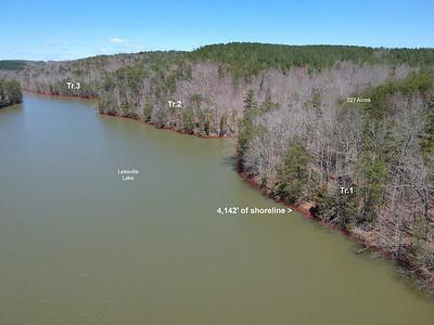 Aerial View of Shoreline