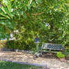 DSC_8402_bench