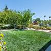 DSC_8369_front_lawn