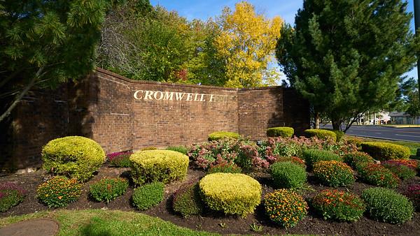 24 Cedarland Court :: Cromwell Hills
