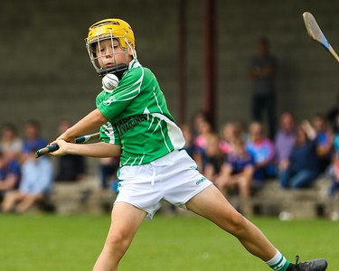 24th August 2019 Tipperary Under 12 A Hurling Championship Final Holycross Ballycahill vs Arravale Rovers in Holycross