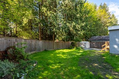 2576 Backyard 1