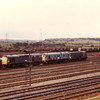 25214 + 968009 + 968001 plus 20s 106, 094, 031 and 130 at Healey Mills on 6th September 1983