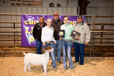 Kate Trammell, Reserve Division Goat & Bronze