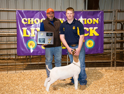 Grand Champion, Hunter Mann
