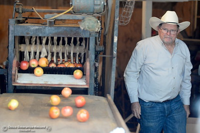 Sam Dresser teaches people about apples during the 25th annual Days of Living History   at the Gold Nugget Museum in Paradise, Calif. Saturday, Sept. 8, 2018.  (Bill Husa -- Enterprise-Record)