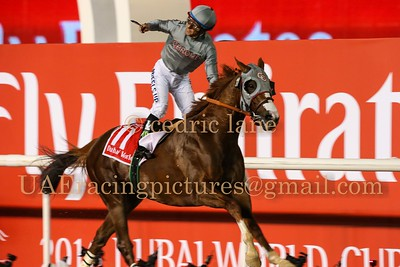 Dubai World Cup 26 March 2016
