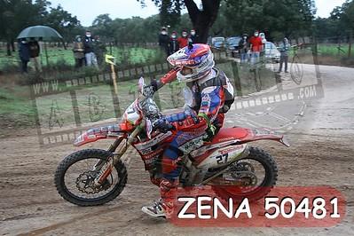 ZENA 50481