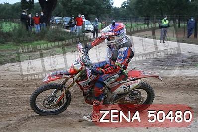 ZENA 50480