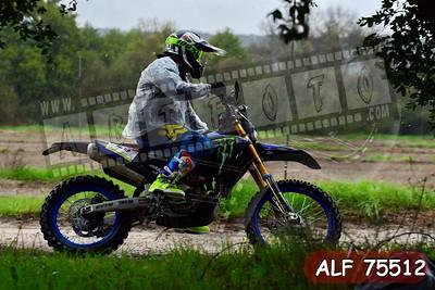 ALF 75512