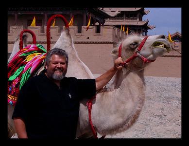 Camel Friend - China -2004