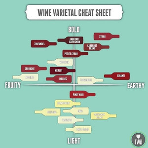 Know the Tastes of Different Wines