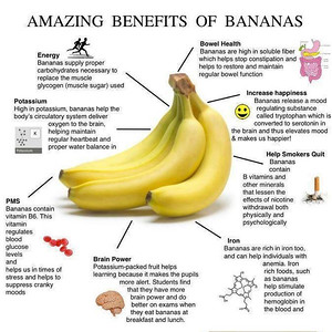 BANANAS  Banana for Breakfast anyone???  This is interesting. After reading this, you'll never look at a banana in the same way again.  Bananas contain three natural sugars - sucrose, fructose and glucose combined with fiber. A banana gives an instant, sustained and substantial boost of energy.  Research has proven that just two bananas provide enough energy for a strenuous 90-minute workout. No wonder the banana is the number one fruit with the world's leading athletes.  But energy isn't the only way a banana can help us keep fit. It can also help overcome or prevent a substantial number of illnesses and conditions, making it a must to add to our daily diet.  DEPRESSION: According to a recent survey undertaken by MIND amongst people suffering from depression, many felt much better after eating a banana. This is because bananas contain tryptophan, a type of protein that the body converts into serotonin, known to make you relax, improve your mood and generally make you feel happier.  PMS: Forget the pills - eat a banana. The vitamin B6 it contains regulates blood glucose levels, which can affect your mood.  ANEMIA: High in iron, bananas can stimulate the production of hemoglobin in the blood and so helps in cases of anemia.  BLOOD PRESSURE: This unique tropical fruit is extremely high in potassium yet low in salt, making it perfect to beat blood pressure So much so, the US Food and Drug Administration has just allowed the banana industry to make official claims for the fruit's ability to reduce the risk of blood pressure and stroke.  BRAIN POWER: 200 students at a Twickenham school ( England ) were helped through their exams this year by eating bananas at breakfast, break, and lunch in a bid to boost their brain power. Research has shown that the potassium-packed fruit can assist learning by making pupils more alert.  CONSTIPATION: High in fiber, including bananas in the diet can help restore normal bowel action, helping to overcome the problem without resorting to l