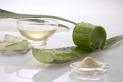 BENEFITS OF ALOE IN SKIN HYDRATION  In the course of our daily lives we are faced with different factors that facilitate the evaporation of water in our skin, when we turn to the aloe.  Because of the countless factors that our skin is exposed daily, its natural hydration process must be complete to keep it in healthy condition and protect it from external aggressions (diseases and aging).  What factors negatively influence skin hydration?  In the course of our daily lives we are faced with different factors that facilitate the evaporation of water on our skin, the most relevant are:  The Sun Air Conditioning and Cold Climates The heating The Snuff Alcohol Detergents, soaps. Makeup Beauty treatments (eg lift, Peeling, IPL Laser treatments cold)  It is also important to note that sebaceous glands down your activity level over time, resulting in more dry skin because it has a lower capacity for water retention.  Benefits of Aloe Vera in skin hydration  The aloe vera also known as aloe has been used through the ages for its many benefits for the skin, its biggest advantage is acting on the dermis, the deeper layer of the skin, which is why most effectively achieved in the tissue repair, strengthening and affirmation of the structure of the skin due to the large amount of minerals (magnesium, sodium, calcium, iron), amino acids and vitamins.  The combination of these elements give the Aloe the ability to regenerate skin cells, to be effective in moisturizing the skin and even in all kinds of wounds both internal and external. Among the main benefits it grants the application of aloe vera on the skin are:  Healing Anti-inflammatory Moisturizer Anti-histamine Antiseptic Anti-acne Hair Stimulator Regenerating Skin Coagulant Relief for burns Stain removal Repellent  Because hydration is important for Shaving Skin?