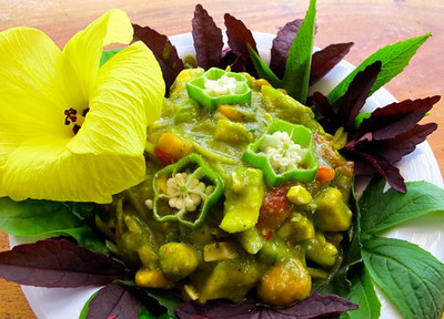 LOW FAT raw and wild savory lunch today served at Jewel of the Sun ....Indian banana curry sauce with mixed veggies, hearts of palm, on a bed of wild greens including cranberry and Jamaican hibiscus, spinaches, & okra leaves. Simple sauce of tomatoes, ginger, lime, curry, coriander, dill, date, red banana, garlic, red onion, topped off with an edible okra flower. The full flavor of whole foods needs no oil, vinegar or salt. For more inspiration, visit http://www.vivalaraw.org/living-foods/to-live-for-recipe-book