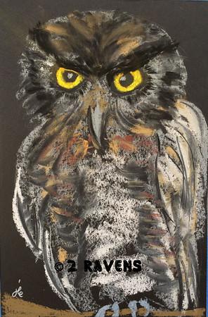 Western Screech Owl, pastel     SOLD