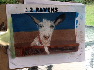 Storm, the goat, in watercolor/pastel  Private collection