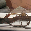 "Typical ""sword and scaffold"" similar to ones used in the era.  Clark was believed to have taken his own personal sword on the Expedition and gave it to an Indian chief on their way home in 1806."