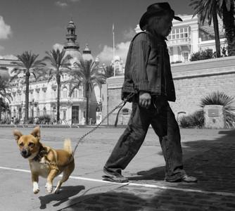 El cherif y el perro El cherif y el perro ( Cartagena)  Autor:Antonio Jesús Justicia Cortés
