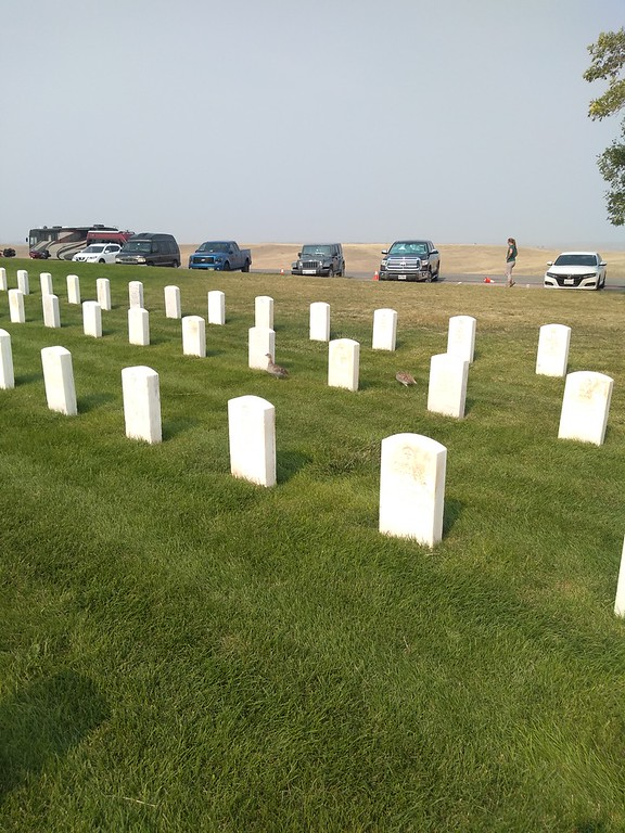veteran cemetery little big horn