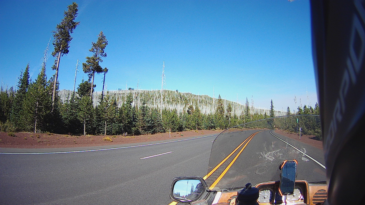 motorcycle on road pov forest oregon