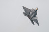 09-4191, F-22A, Lockheed Martin, RIAT2016, Raptor, US Air Force (3.3Mp)