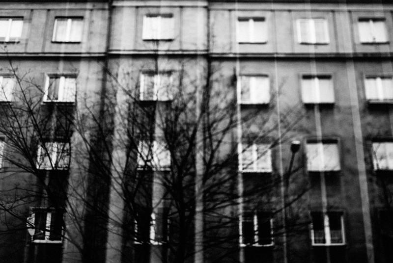 148/365 Blinds Winter/Ratajczaka