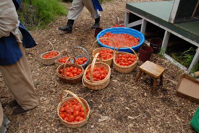 RF-TomatoPreShow-0021