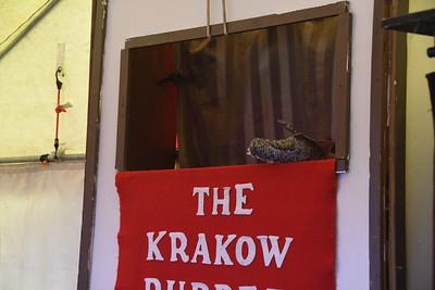 RF-KrakowPuppetTheBasilisk-0026