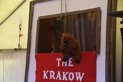 RF-KrakowPuppetTheBasilisk-0029