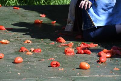RF-TomatoShow-0039