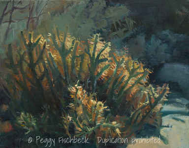 Desert Cactus, Borrego Springs, 14x18, oil on canvas  E0491