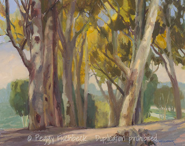 Eucalyptus, 16x20, At SCOUT Quarters D  H0695