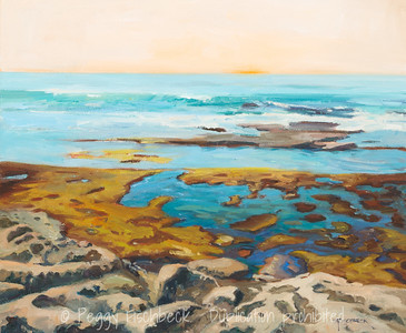 Tidal Pool at Sunset, La Jolla, 20x24, oil on canvas - available at SCOUT Quarters D  E0486