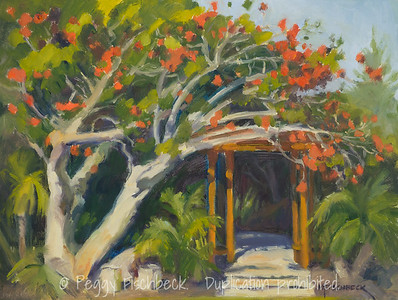 Coral Tree, 9x12, oil on panel
