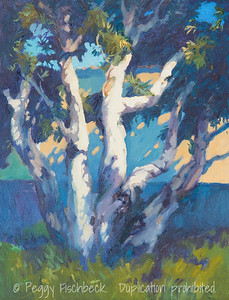 Paperbark Eucalyptus, 11x14, oil on canvas - at SCOUT Quarters D