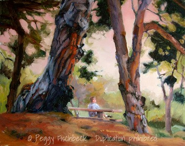 Solitude in the Pines (Presidio) 11x14 oil on canvas